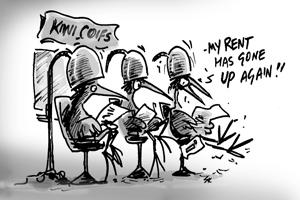 NZ-renters