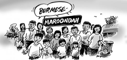 burmese maroondah