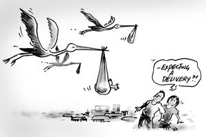 storks pic